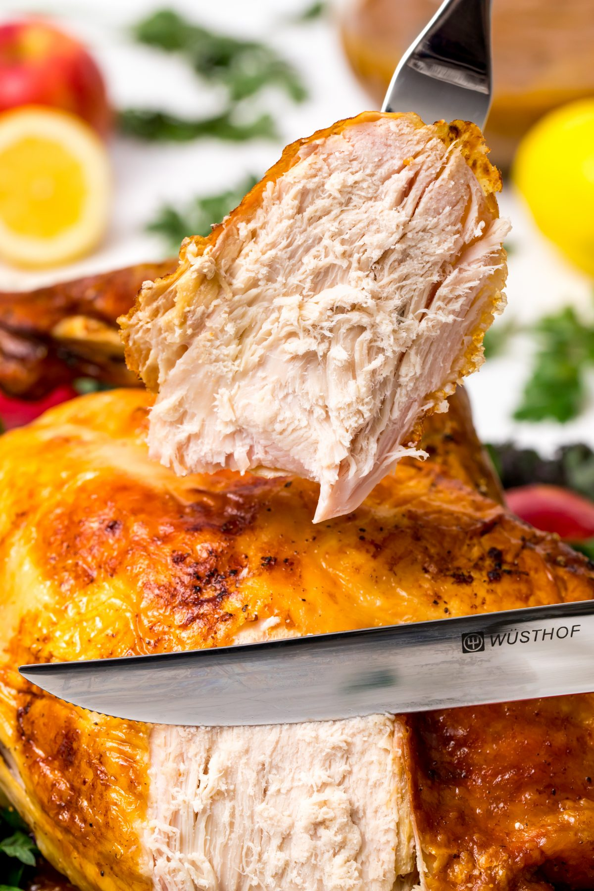 5D4B3288 - James Beard Roasted Turkey - Makes for a perfect holiday celebration!