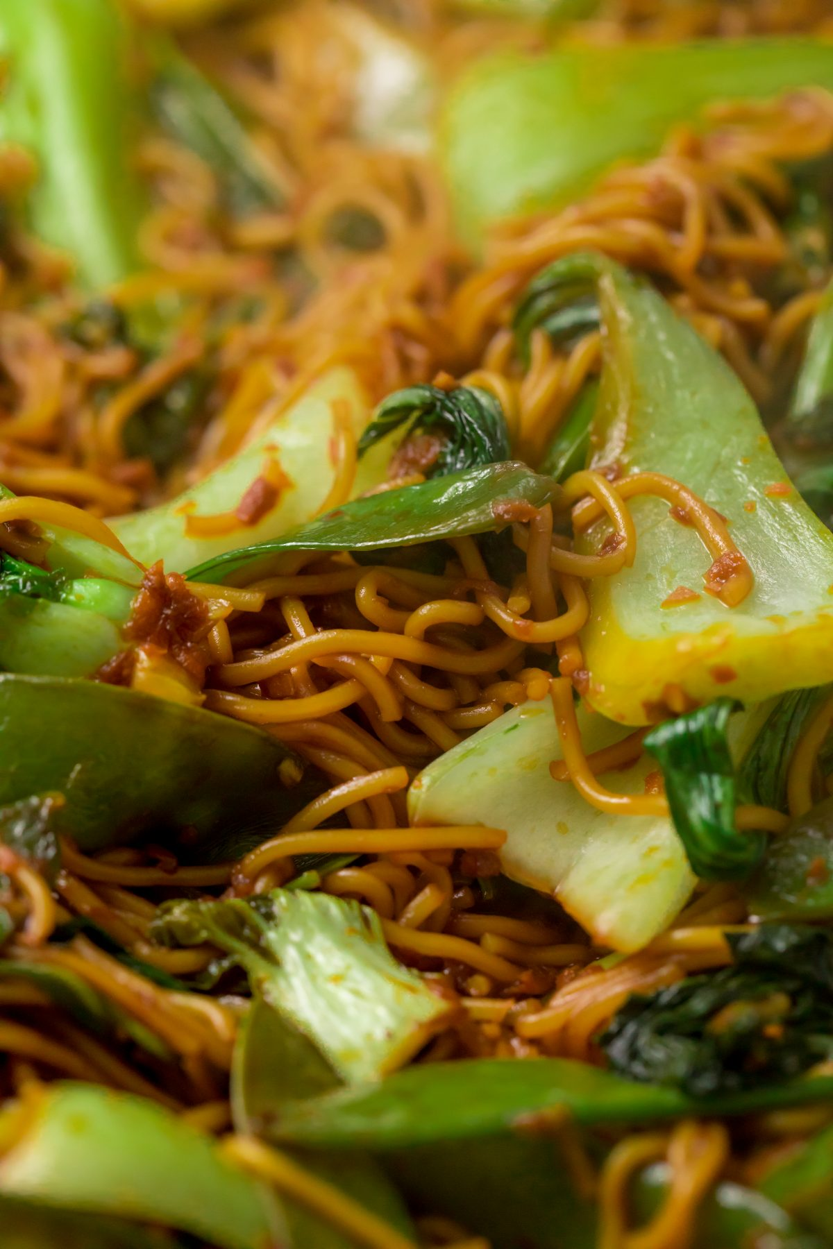 5D4B1567 - Salmon Yakisoba with Blood Oranges - Transfer the noodles and vegetables to a serving platter