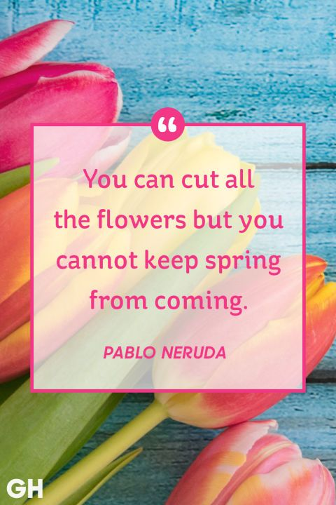 Each spring brings the opportunity to start fresh