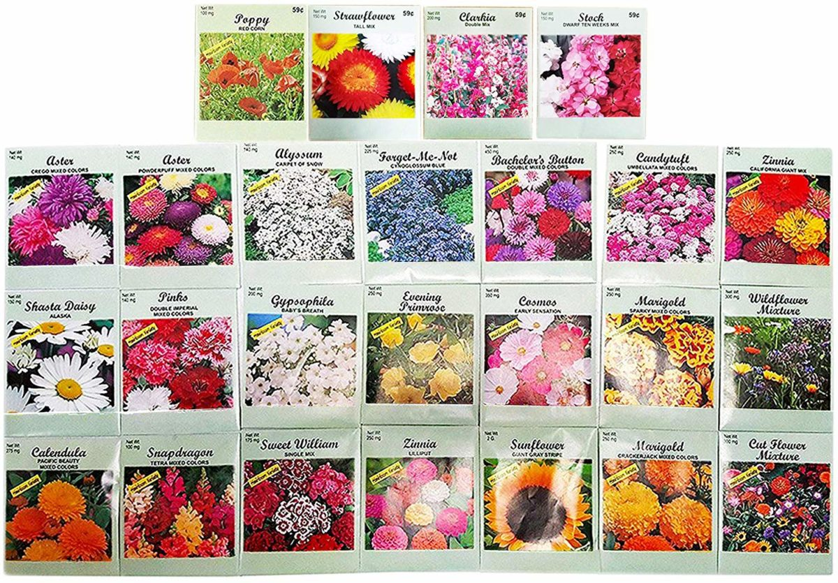 easter-gift-flower-seeds